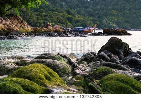 Seascape, Moss covered on rocks at the beach
