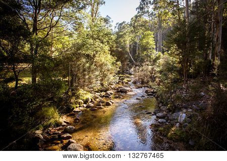 Leather Barrel Creek near Thredbo in New South Wales, Australia