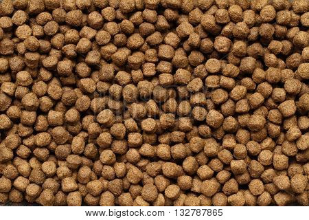 Pile of dry pet food for background