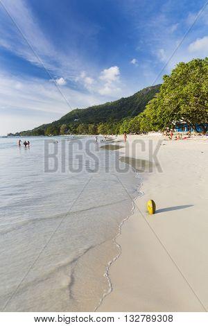 Coconut At Beau Vallon Beach, Mahe, Seychelles, Editorial