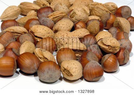 Hazelnuts And Almonds