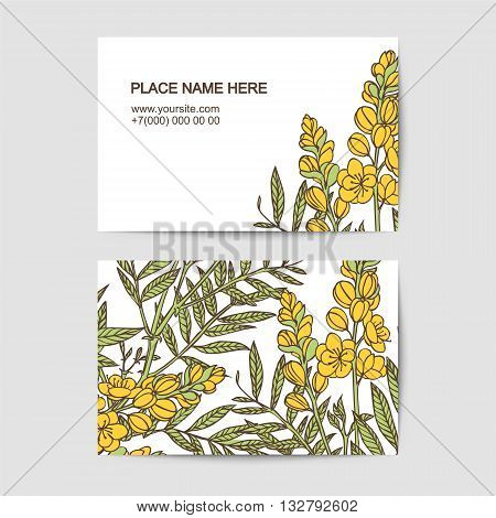 visiting card vector template with senna  flowers for florist salon