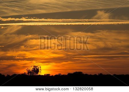 beautiful red sunset sky over a forest