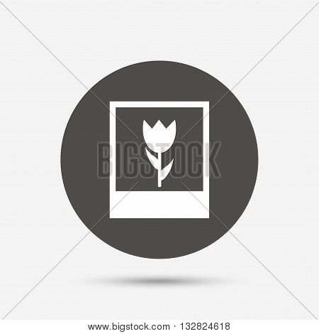 Macro photo frame sign icon. Flower photography symbol. Gray circle button with icon. Vector
