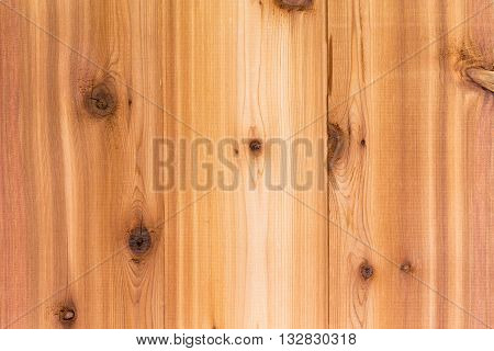 Cedar Wood Background Texture With Boards