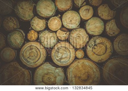 Raw Wood Logs Background. Lumber Works Photo Backdrop.