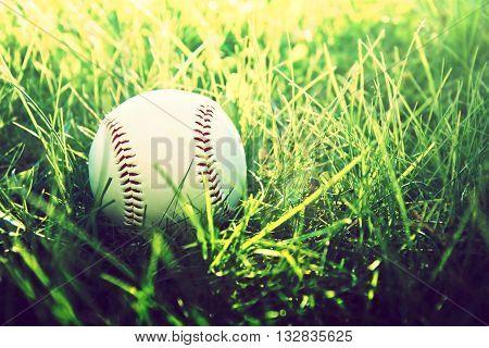 Baseball game. Baseball ball in grass. Instagram vintage picture.