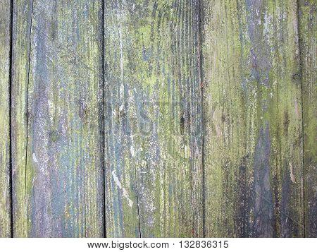 Texture - Wood Beams