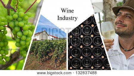 Wine industry presentation card with four images
