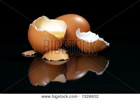 Fresh Eggs (Broken)