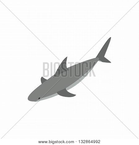 Shark icon in isometric 3d style isolated on white background. Sea and animals symbol