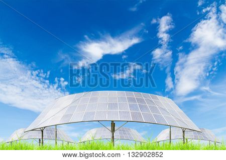 Solar panels on green grass field against blue sky backgrounduseful for carbon credits concept.