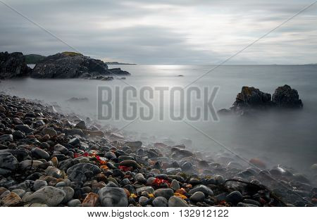 Rocky coastline near Arisaig with red alga Highlands Scotland