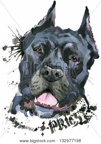 Cute Dog. Dog T-shirt graphics. watercolor Dog illustration. watercolor funny Dog for fashion print, poster, fashion design. Aggressive dog breed.