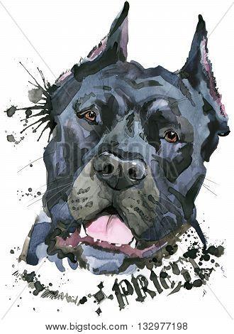 Cute Dog. Dog T-shirt graphics. watercolor Dog illustration. watercolor funny Dog for fashion print, poster, fashion design. Aggressive dog breed.