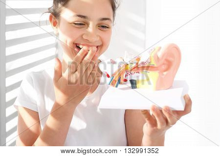 How is made the human ear? The girl is watching a model of the human auditory