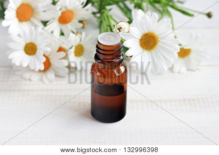 Chamomile cosmetic product. Apothecary glass dropper bottle, fresh white camomile flowers. Soft focus.