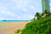 Sandy beach with a pier surrounded by tropical plants and highrise buildings taken at Sunny Isles in Miami Dade, FL poster