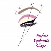 Perfect eyebrow shape. How to create perfect eyebrow. Vector illustration. poster