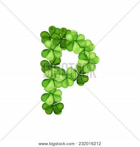 Letter P Clover Ornament Isolated On White Background