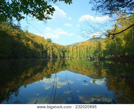 Autumn Forest With Blue Lake And Reflection