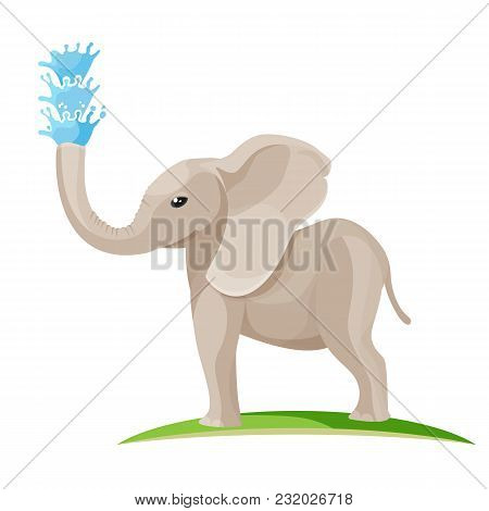 Young Baby Elephant Blows Water Out Of Long Trunk. Huge Wild Animal With Big Ears Stands On Grass An