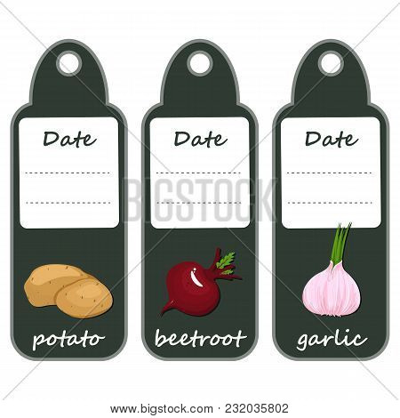 Organic Label With Green Vegetables .large Potatoes, Red Barracks And Fragrant Garlic. Set Of Labels