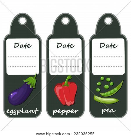 Organic Label With Green Vegetables .red Big Pepper And Ripe Violet Eggplant, Green Polka Dots. Set