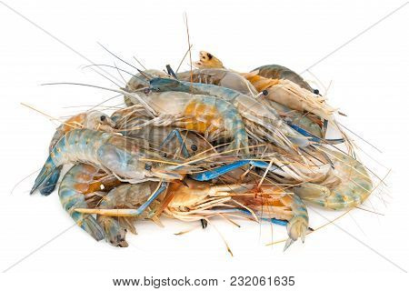 Heap Shrimps On White, Close Up Of Crustacean Isolated
