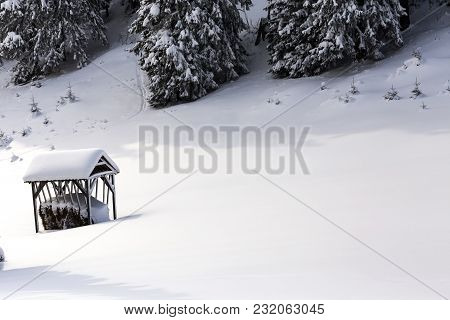 Forest In Winter Season In Romanian Carpathians Mountain With A Food Shelter For Wild Animals