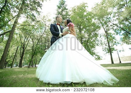 Bottom View.happy Newlyweds In The Park In Sunny Day