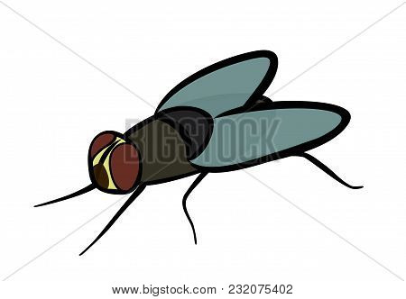 Vector Illustration, Flat Cartoon Gray Ordinary Fly Isolated On White Background