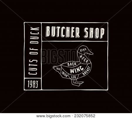 Stock Vector Duck Diagram In The Style Of Handmade Graphics. Label Template For Butcher Shop. White