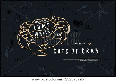 Stock Vector Crab Cuts Diagram In The Style Of Handmade Graphics. Illustration With Rough Texture. C