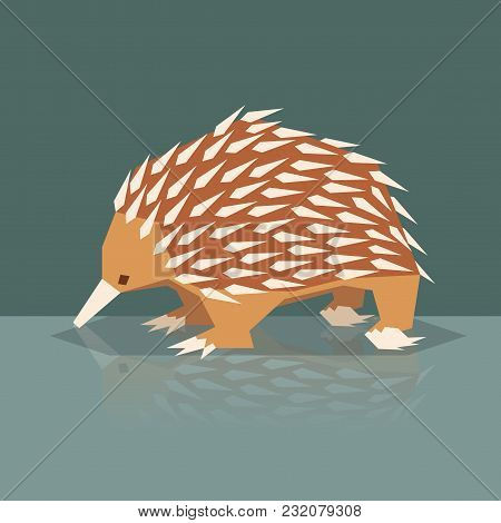 Vector Image Of The Flat Design Echidna
