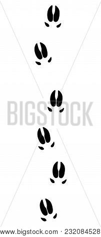 Wild Boar Or Pig Tracks - Isolated Black Icon Vector Illustration On White Background.
