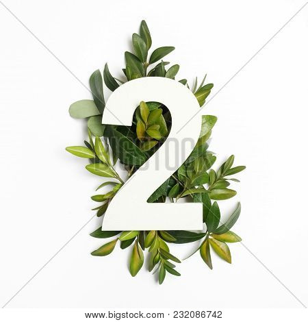 Number Two Shape With Green Leaves. Nature Concept. Flat Lay.
