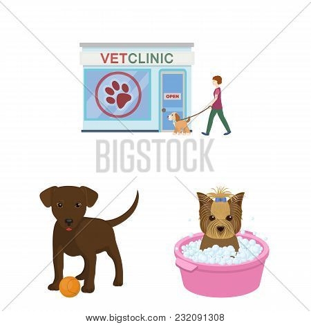 Pet Cartoon Icons In Set Collection For Design. Care And Education Vector Symbol Stock  Illustration