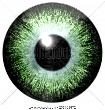 Detail Of Eye With Light Green Colored Iris, Veins And Black Pupil With Glow