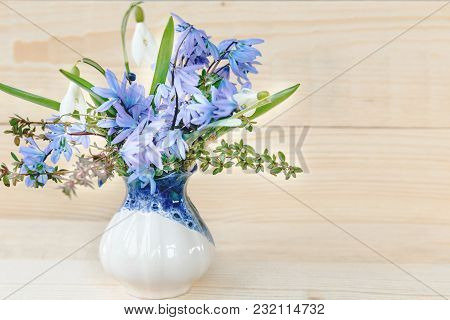 Bunch Of Spring Flowers. Snowdrop On The White Background