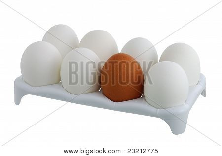 Seven White Eggs And One Brown In Carton