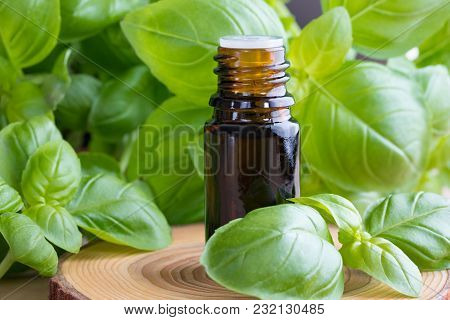 A Bottle Of Basil Essential Oil With Fresh Basil Twigs On A Wooden Background