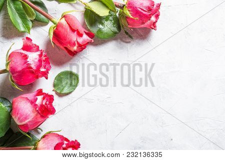 Red Rose Flower On Stone  Table. Top View With Copy Space.