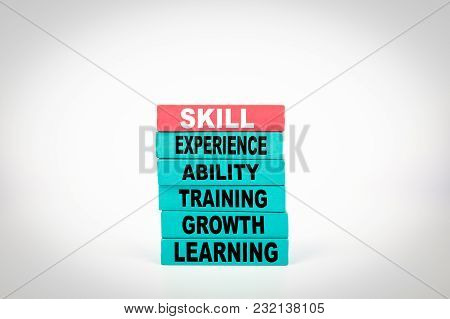 Skill Business Concept With Colorful Wooden Blocks.