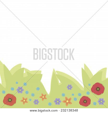 Wildflowers Poppies Forget-me-nots Blue Red And Orange On Ponies Light Green Foliage On A White Back