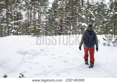 A Woman Climbs The Hill Through Deep Snowdrifts In The Winter Forest, Cloudy Day.
