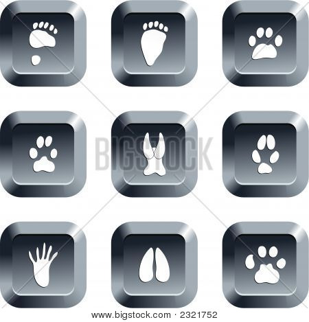 collection of animal track icons set on keypad style buttons poster