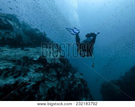 Diver In The Reef, Ko Lanta Island Thailand