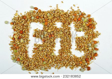 Close View Of Word, Fit Formed Using Sprouted Bean Pulses