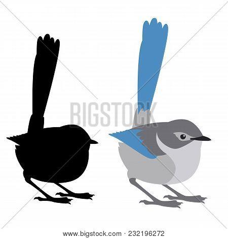 Fairy Wren Bird Vector Illustration Flat Style Black Silhouette Profile